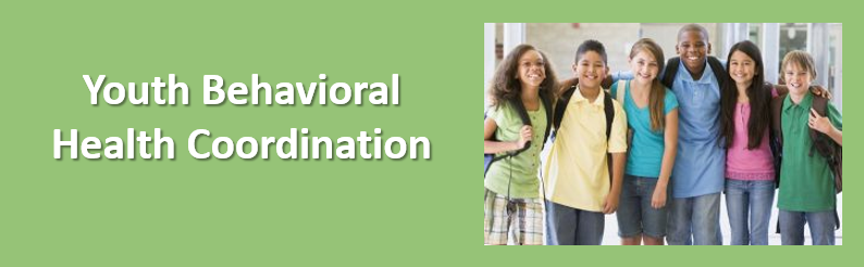 Youth Behavioral Health Coordination